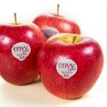 ENVY APPLE-NEW ZEALAND/USA/30,35,40PCS/S9.5KG