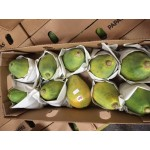 HAWAIIAN PAPAYA-4KG/8-10PCS