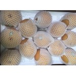 KOREAN PEAR-26PCS/15KG