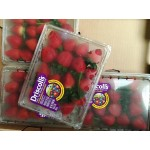 LONG STEM STRAWBERRY USA/ 454G X 2 PACKAGES