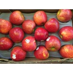 ENVY APPLE NEW ZEALAND/30,35,40PCS/10KG