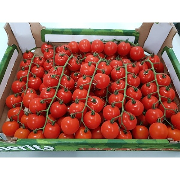 CHERRY TOMATO-HOLLAND/3KG